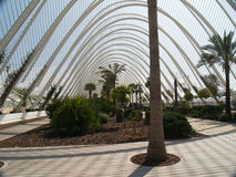 The City of Arts and Sciences, Valencia Spain Royalty Free Stock Image