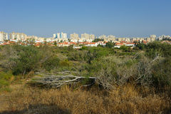 The city of Ashkelon in Israel. The view from City Park royalty free stock photo