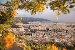 City of Athens with spring trees in Greece Stock Photos
