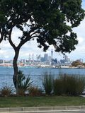 City. Auckland from Devonport Royalty Free Stock Photography