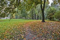 City Autumn Landscape Stock Photography