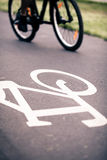 City bicycle riding on bike path. Alternative ecological transportation. Commute on bicycle in urban environment, asphalt gray bike lane with bicycle markings Stock Photos