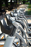 City bike rental outdoors. City bike rental. Row of many silver color bikes stands outdoor in summer day closeup Stock Photos