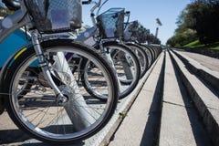City bikes, bicycle rental Stock Images