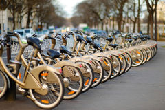 City bikes for rent Stock Image
