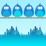 City birds. Blue birds sitting over the city Royalty Free Stock Photos