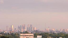 City with birds stock video