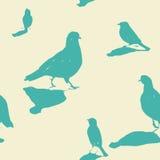 City birds seamless pattern. City birds on the ground - vintage seamless pattern Stock Image