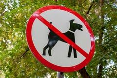 City black-red-white round sign of dog walking prohibited. City lawn black-red-white round sign of dog walking prohibited on a background of green foliage Royalty Free Stock Photography