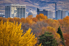 City of Boise Idaho with Autumn trees Royalty Free Stock Images