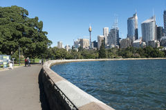 City from the Botanic Gardens. The city of Sydney fron the Botanic gardens Sydney Australia royalty free stock photos