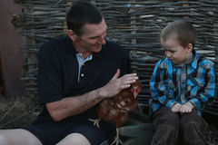 City boy first saw the chicken. Grandfather to his grandson shows colorful chicken Royalty Free Stock Photos