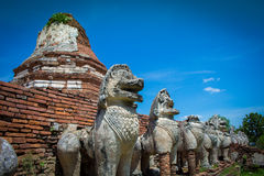 City building remain of Temple in Ayutthaya, Historical Park in Royalty Free Stock Images