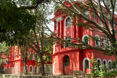 City building in the shadow of tall trees. Indian metropolis, a large modern city, a university building, Red walls, Bangalore India, city park, tall house Stock Photography