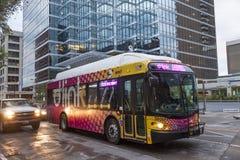 City Bus in Dallas Downtown, Texas Stock Photo