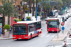 City buses Stock Image