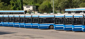 City buses / Public transport. In Krakow Stock Images
