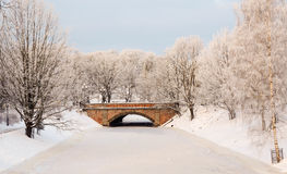 City canal in the frosty morning Royalty Free Stock Image