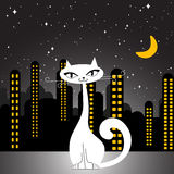City cat. Cute city cat illustration vector Stock Photo