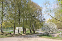 City court yard. Of the multi-storey house in Vilnius on 2014 spring Royalty Free Stock Photo