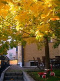 City Courtyard  in the Autumn. City courtyard, autumn tree and red toy Royalty Free Stock Photo