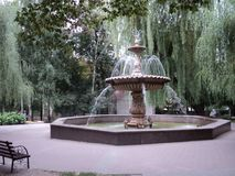City of cues beautiful fountain in the city park. City tour kyiv summer trees beautiful fountain in the city park background open air royalty free stock photography