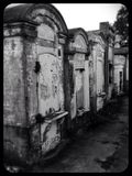 City of the dead Royalty Free Stock Photography