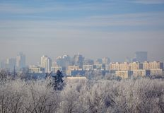 City distance and the trees close. Snowy frosty morning haze. Stock Image