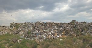 The city dump. City dump in the outskirts of the city near yellow houses. The bulldozer moves along the landfill, leveling out the garbage. Gulls feeding on food stock footage