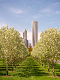 Grant Park Chicago skyline spring Stock Photography