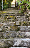 City europe old staircase and vegetation Stock Photos