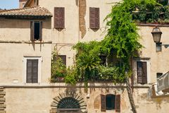 City garden on balcony in Rome, Italy. An example of a city garden. Balcony of an old building with a small garden and flowers in the center of Rome, Italy Royalty Free Stock Photo