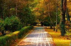 City Garden In Autumn Royalty Free Stock Image
