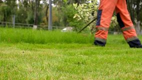 City gardening activity. Worker in uniform mowing lawn with trimmer. Urban scene stock video footage