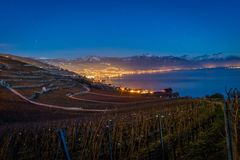 City and Geneva lake at night. With the city lights and a vineyard in the foreground Stock Images