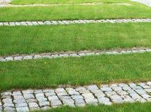 City. Grass, lawn, green city, surrounding the building, cut grass, nice lawn stock photos