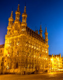 City hall of Leuven in the evening Stock Images