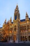 City hall of Vienna with Christmas tree in front. At dusk Royalty Free Stock Photography