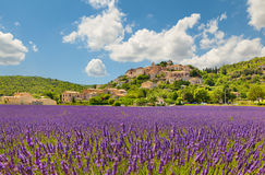 City on a hill with a lavender field Royalty Free Stock Photos