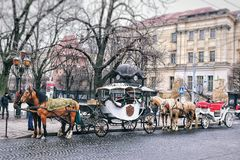 City horse and carriage stock photos