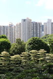 City In The Forest Stock Photography