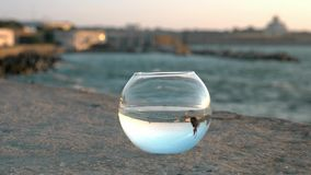 City jetty wonderful marine landscape reflected in round fishbowl little fish Betta splendens float in the blue sky at sunset. con stock video footage