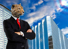 City jungle. Jaguar businessman looking at the city Stock Photos