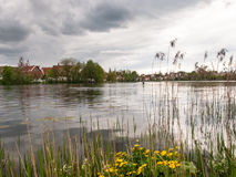City lake nestled in the park. Bad Waldsee, Germany: City lake nestled in the park Royalty Free Stock Images