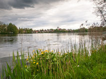 City lake nestled in the park. Bad Waldsee, Germany: City lake nestled in the park Stock Image