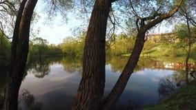 City lake at sunset stock footage