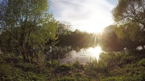 City lake at sunset stock video footage