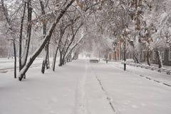 Winter city landscape. Cloudy morning. City landscape. Cloudy morning. The streets fences are covered with snow. Abakan. Khakassia. Siberia. 03/31/2018 Stock Photography