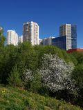 City landscape in an ecologically clean place in city of Khimki, Russia. City landscape in an ecologically clean place in the city of Khimki, Russia royalty free stock images