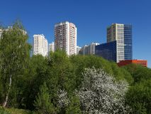City landscape in an ecologically clean place in city of Khimki, Russia. City landscape in an ecologically clean place in the city of Khimki, Russia royalty free stock photos